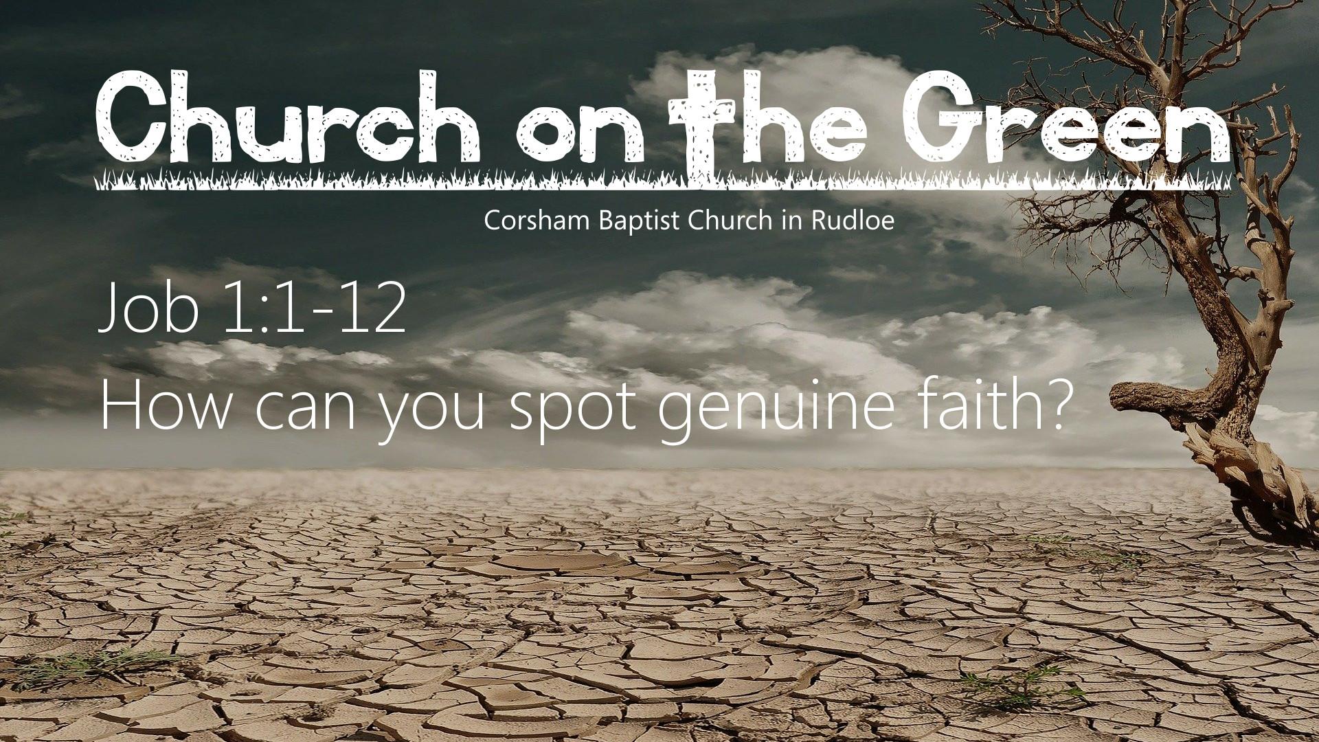 Job 1:1-12 How can you spot genuine faith?