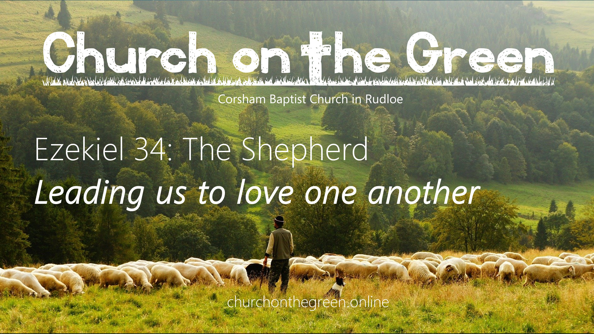 Ezekiel 34: The Shepherd – leading us to love one another